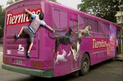 Реклама на автобус